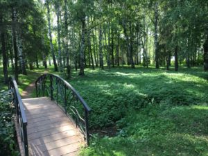 английский сад в Ильинском