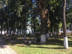 Сад при доме Грибушина в Перми