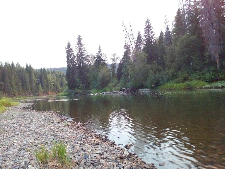 Рыбалка река вижай пермский край