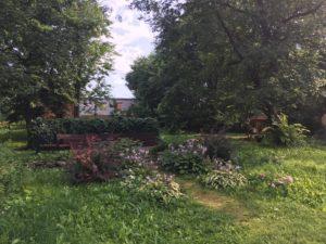 Сад при библиотеке