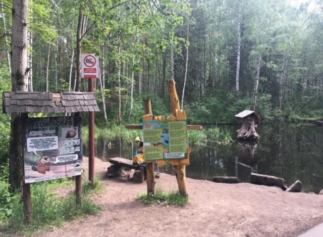 Дом бобра в Балатовском парке