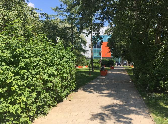 Сквер имени Вагнера Пермь