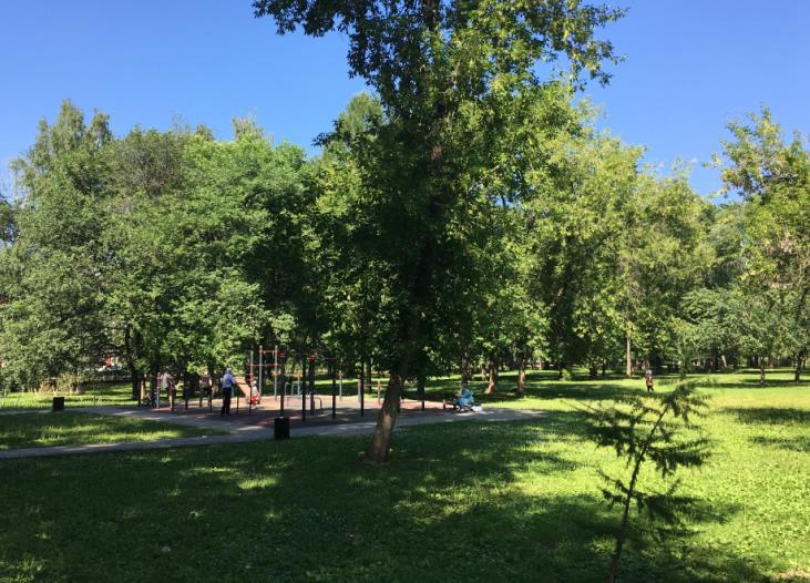 Спортивная площадка сад Миндовского