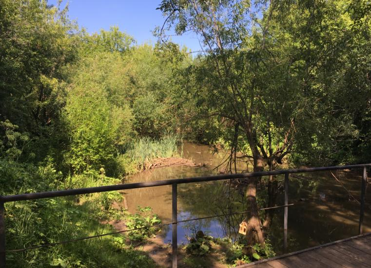 Река Данилиха