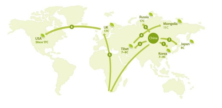 пути поставки чая из Китая
